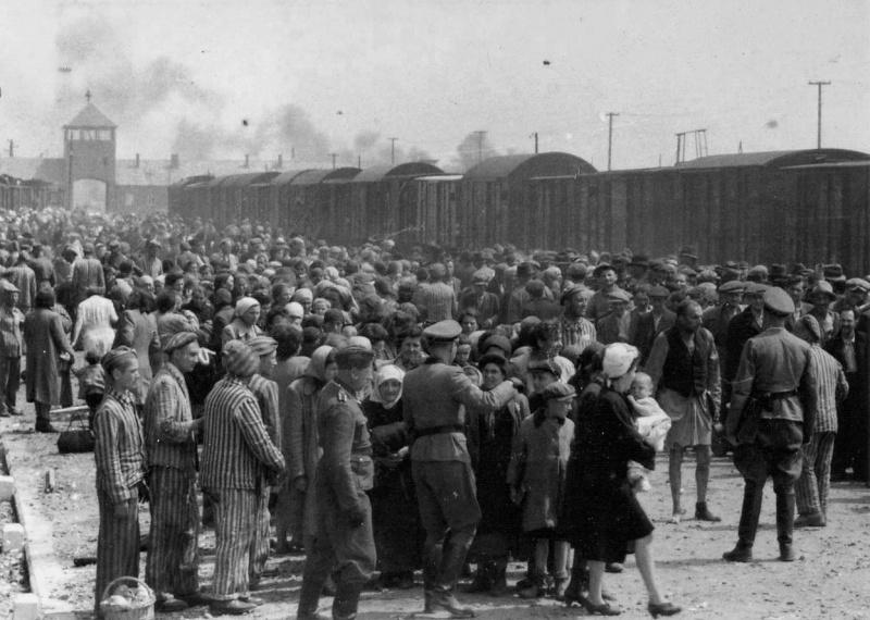 Прибытие эшелона с новыми узниками в концлагерь Освенцим (Биркенау-Аушвиц)